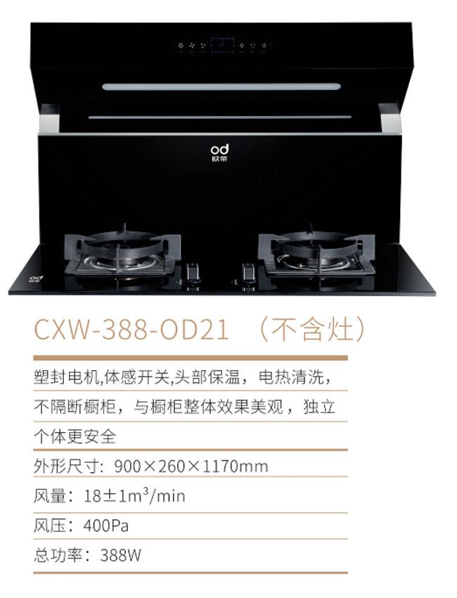 OD-21.jpg